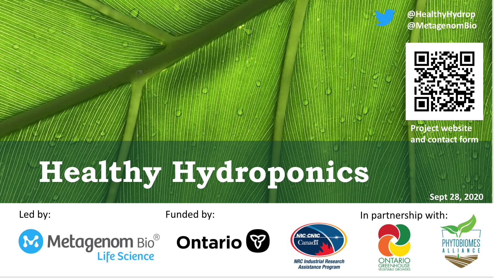 The introductory slide of the virtual presentation on Healthy Hydroponics hosted by OMAFRA.